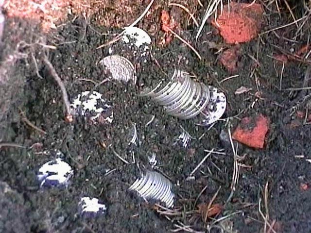 Неработающий обнаружил при помощи металлоискателя крупнейший.